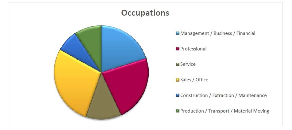 Roselle Area - Occupations